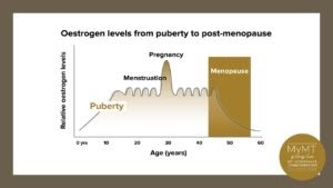 Changes to the body during menopause 1